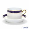 Richard Ginori Impero Burma Tea Cup & Saucer 220 cc