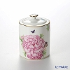 Royal Albert x Miranda Kerr 'Friendship' White Tea Caddy