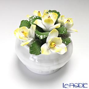 Aynsley Florals Anniversary Flowers - January Jasmine