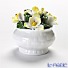 Aynsley 'Anniversary Flowers - Jasmine / January' Floral Pot