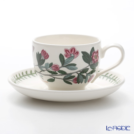 Portmeirion Botanic Garden Teacup and Saucer (T), Rhododendron