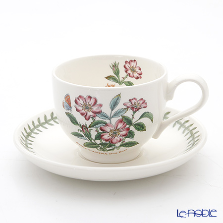Portmeirion Botanic Garden Flower of the Month June Teacup and Saucer, Dog Rose