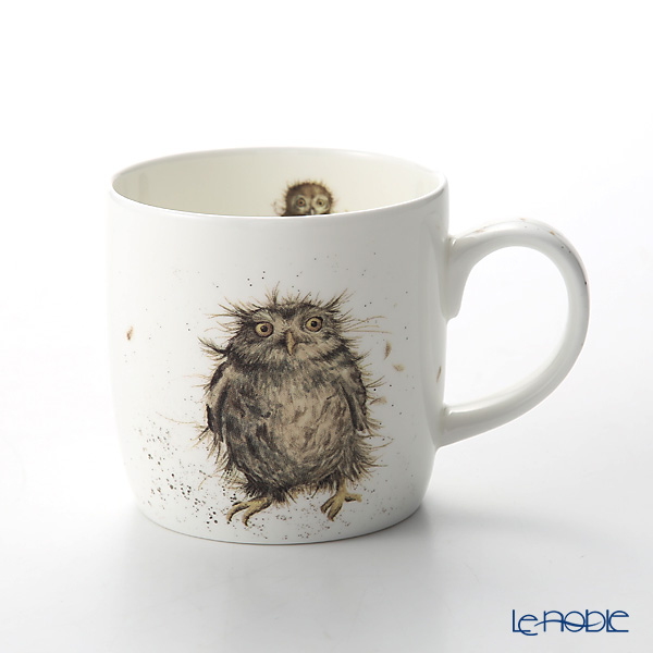 Royal Worcester 'Wrendale' What a Hoot (Owl / Bird) Mug 330ml