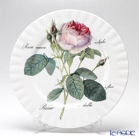 Roy Kirkham Redoute Rose  Dinner Plate