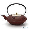 Kyo ware / Kiyomizu 'Fuchi Hanakomon' T0184 Iron Tea Pot 900ml