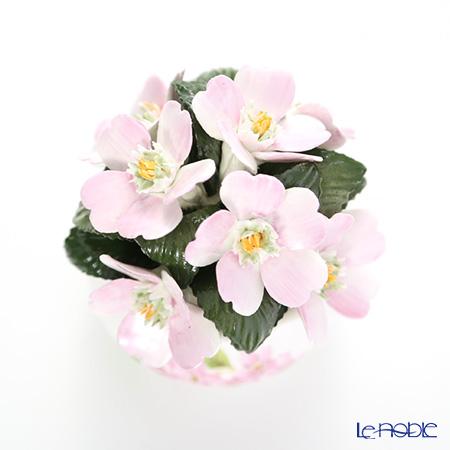 Aynsley Florals Cherry Blossom Cascade Bowl SS
