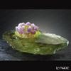 [Back Order] Liuli Gongfang Lotus (Prosperity) Blooming Lotus, Surging Spring PEF099. ADAEI