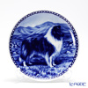 Dog plate T/7158 Blue Merle rough Collie