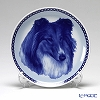 Dog Plate T/7504 Collie with hunger White wall hook with rough collies