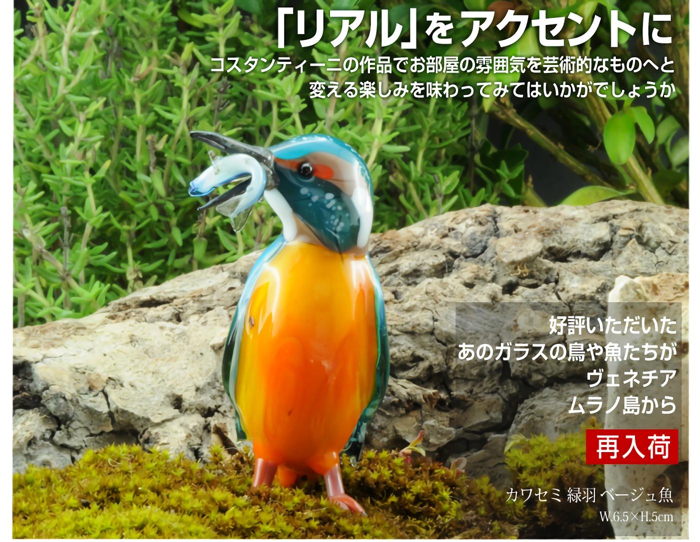 カワセミ 覧� ベージュ魚