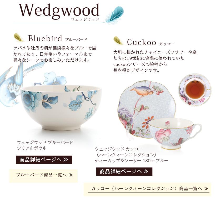 bird collection_02