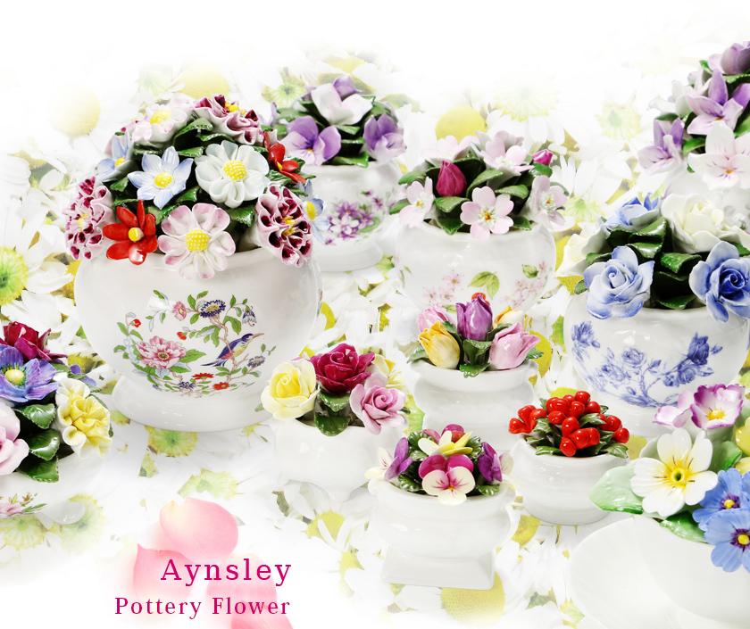 Aynsley Pottery Flower(エインズレイ ポッタリー フラワー)