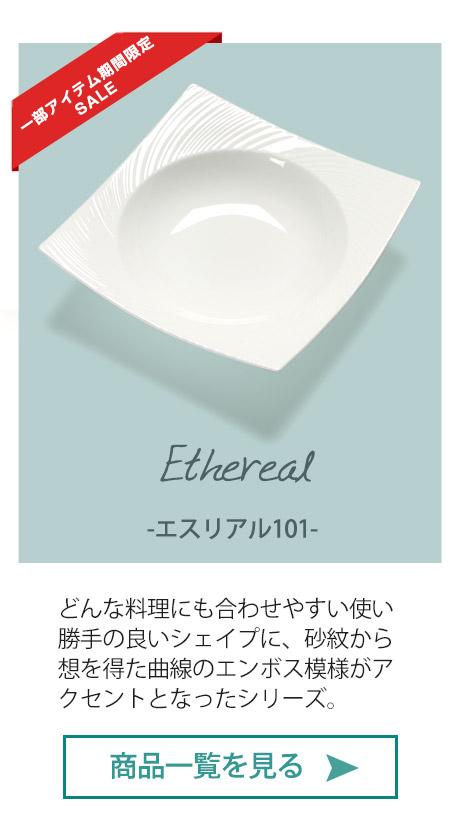 エスリアル101